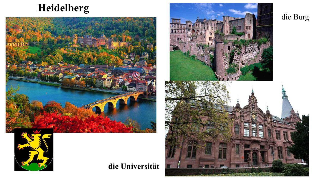 Heidelberg die Burg die Universität