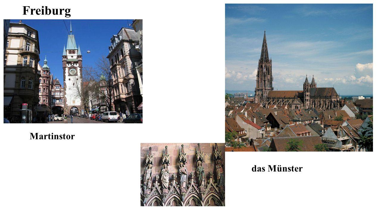 Freiburg Martinstor das Münster