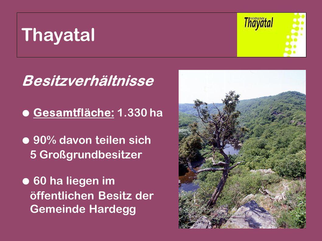 Besitzverhältnisse ● Gesamtfläche: 1.330 ha ● 90% davon teilen sich 5 Großgrundbesitzer ● 60 ha liegen im öffentlichen Besitz der Gemeinde Hardegg Tha