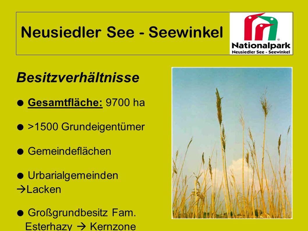 Neusiedler See - Seewinkel Besitzverhältnisse ● Gesamtfläche: 9700 ha ● >1500 Grundeigentümer ● Gemeindeflächen ● Urbarialgemeinden  Lacken ● Großgru