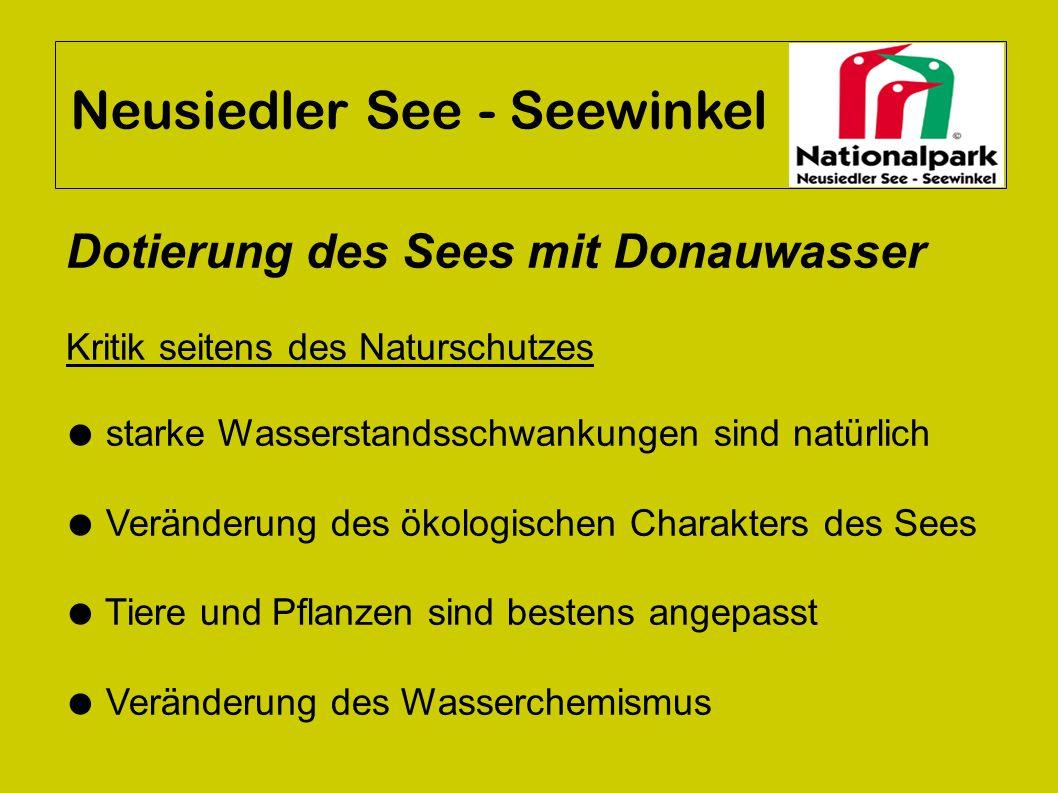 Neusiedler See - Seewinkel Dotierung des Sees mit Donauwasser Kritik seitens des Naturschutzes ● starke Wasserstandsschwankungen sind natürlich ● Verä