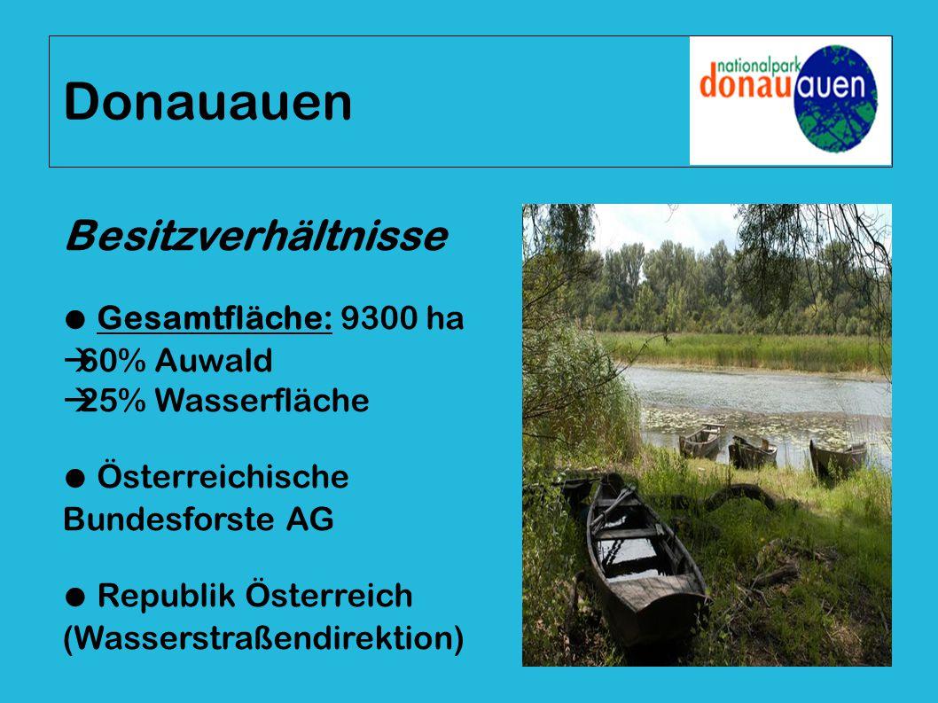 Besitzverhältnisse ● Gesamtfläche: 9300 ha  60% Auwald  25% Wasserfläche ● Österreichische Bundesforste AG ● Republik Österreich (Wasserstraßendirek