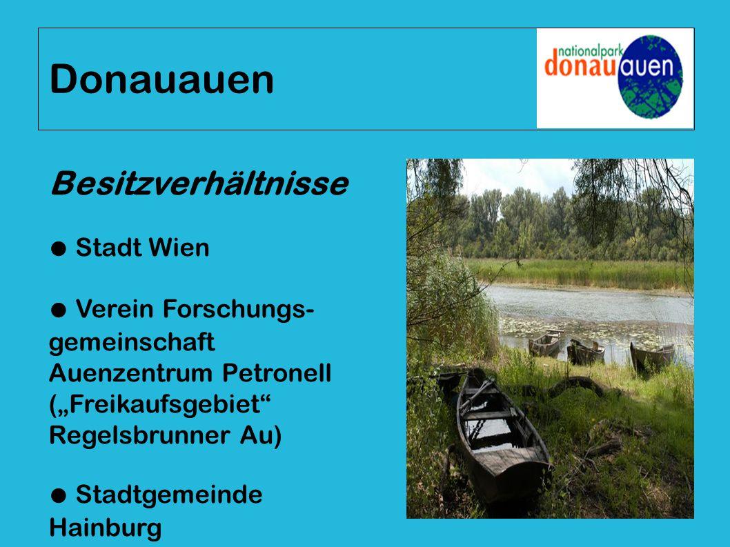 """Besitzverhältnisse ● Stadt Wien ● Verein Forschungs- gemeinschaft Auenzentrum Petronell (""""Freikaufsgebiet"""" Regelsbrunner Au) ● Stadtgemeinde Hainburg"""