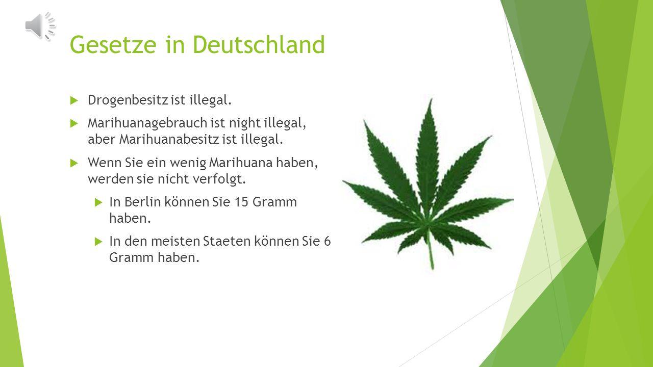 Sollte Cannabis legalisiert werden? Jacqueline Grasso