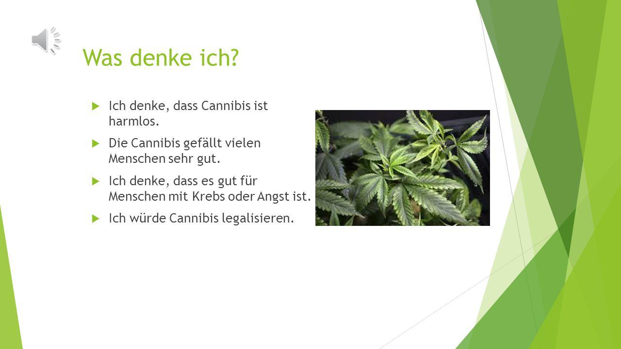 Was denken die Deutschen?  35 Prozent der Deutschen unterstützen Legalisierung von Cannibis.  In Berlin möchten viele Leute ein Coffeeshop mit Canni