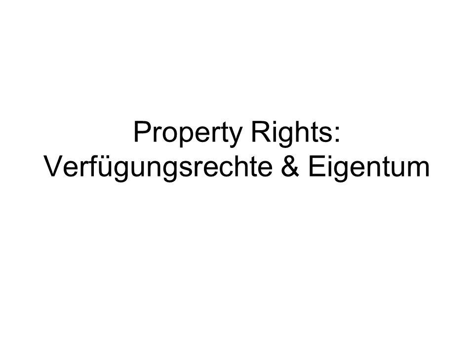 Property Rights: Verfügungsrechte & Eigentum