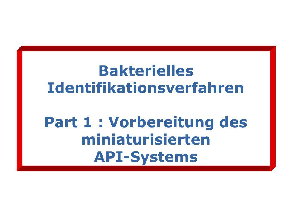 Bakterielles Identifikationsverfahren Part 1 : Vorbereitung des miniaturisierten API-Systems
