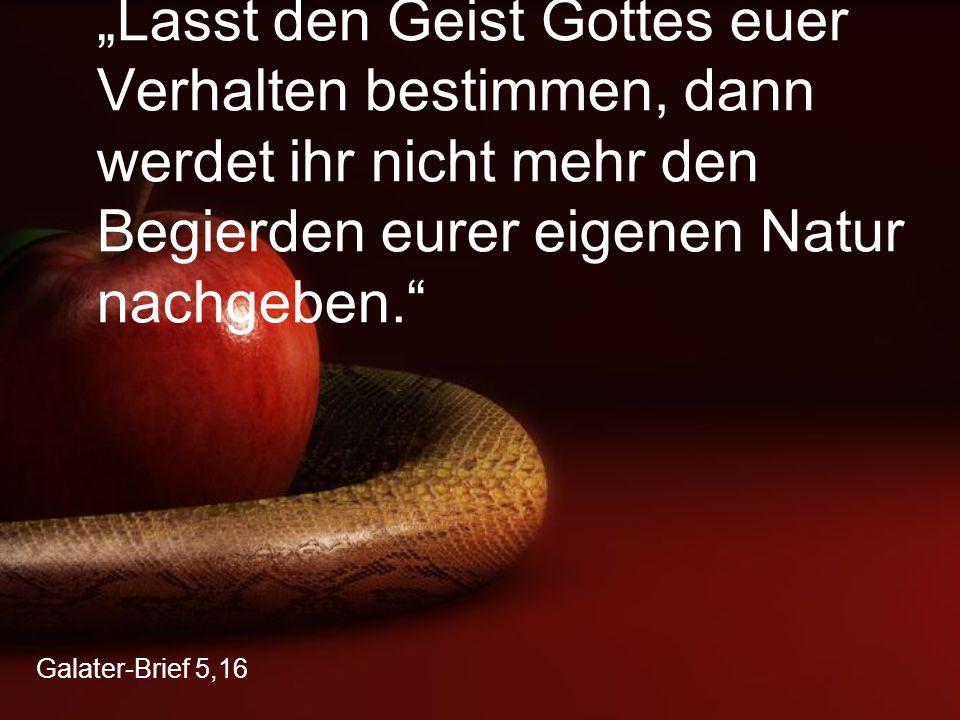 """Galater-Brief 5,16 """"Lasst den Geist Gottes euer Verhalten bestimmen, dann werdet ihr nicht mehr den Begierden eurer eigenen Natur nachgeben."""""""