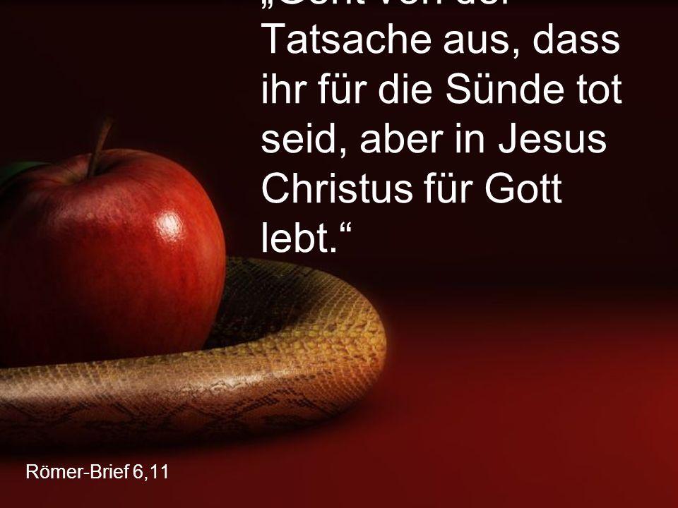 """Römer-Brief 6,11 """"Geht von der Tatsache aus, dass ihr für die Sünde tot seid, aber in Jesus Christus für Gott lebt."""""""