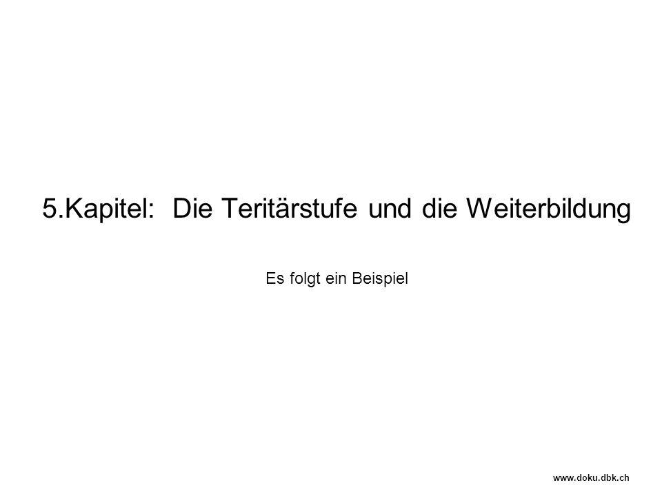 5.Kapitel: Die Teritärstufe und die Weiterbildung Es folgt ein Beispiel www.doku.dbk.ch
