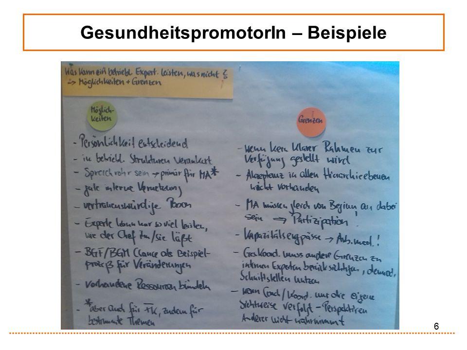 17 BGM-Haus (Handlungsfeld BEM) Betriebliches Eingliederungsmanagement (§ 84 Abs.