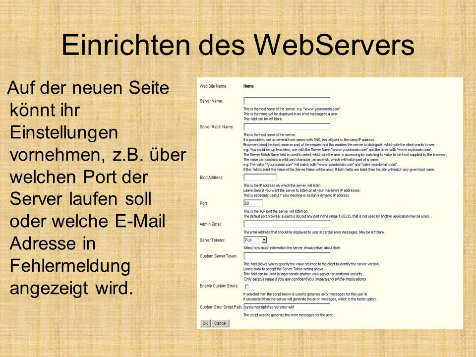 Einrichten des WebServers Auf der neuen Seite könnt ihr Einstellungen vornehmen, z.B. über welchen Port der Server laufen soll oder welche E-Mail Adre