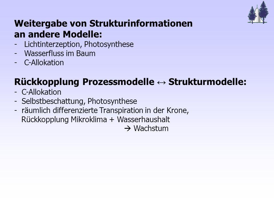 Weitergabe von Strukturinformationen an andere Modelle: - Lichtinterzeption, Photosynthese - Wasserfluss im Baum - C-Allokation Rückkopplung Prozessmodelle ↔ Strukturmodelle: - C-Allokation - Selbstbeschattung, Photosynthese - räumlich differenzierte Transpiration in der Krone, Rückkopplung Mikroklima + Wasserhaushalt  Wachstum