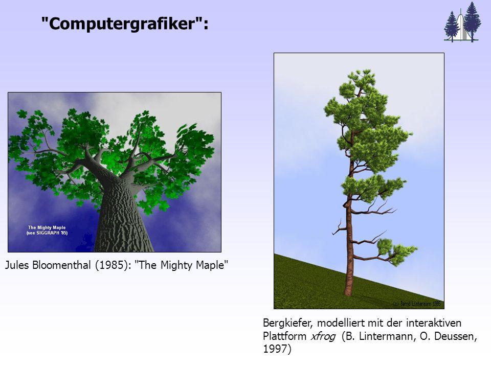 Ökosystemforschung: Wälder als strukturreiche Lebensgemeinschaften Konkrete Fragestellungen Einfluss der Baumarchitektur - auf den C-Haushalt - auf Wasserhaushalt / Trockenstress-Resistenz Deutung von Kronenverlichtungsmustern Simulation: Konkurrenz, forstliche Eingriffe