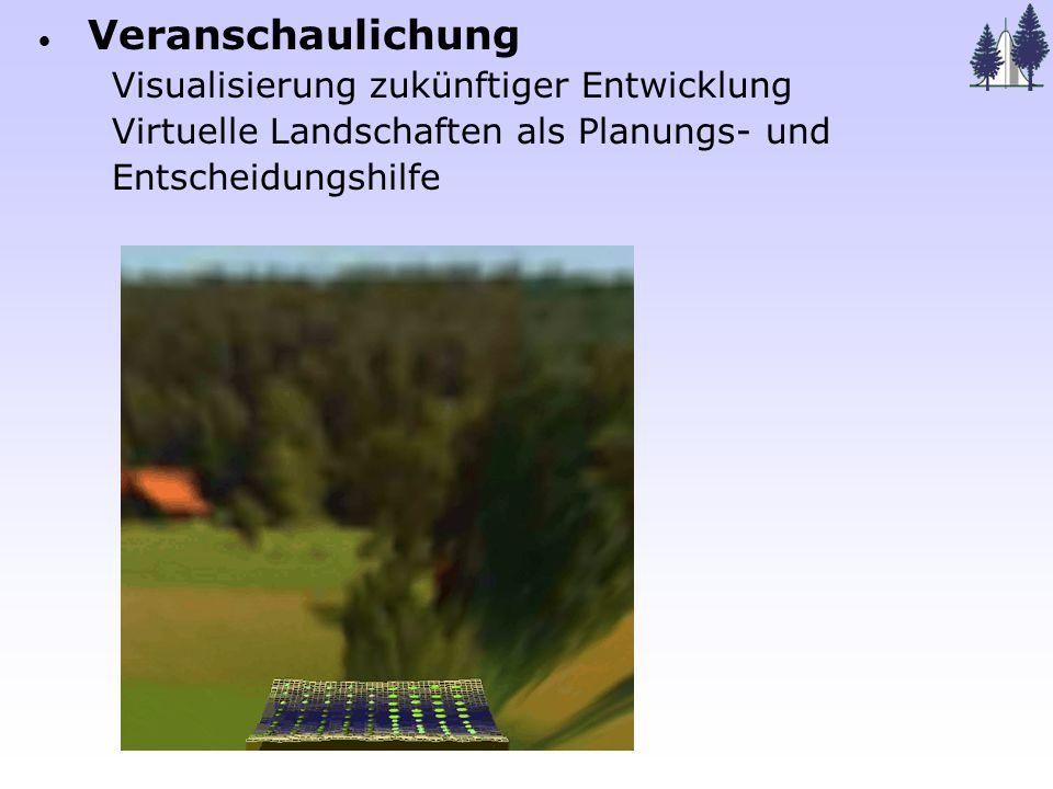 Weitergabe von Strukturinformationen an andere Modelle: - Lichtinterzeption, Photosynthese - Wasserfluss im Baum - C-Allokation