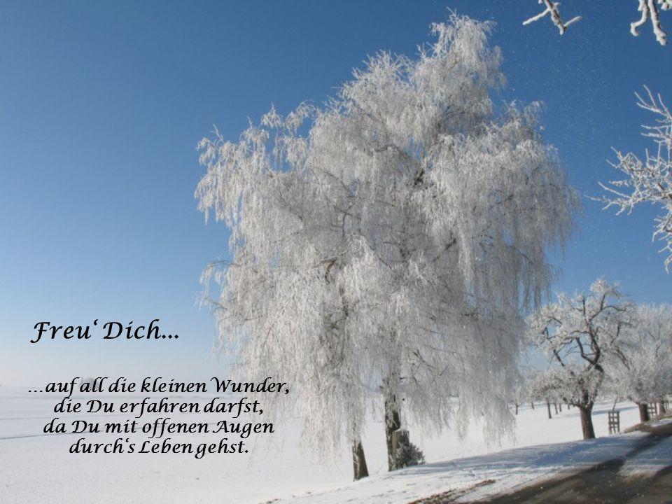 Freu' Dich… …auf den unermesslichen geistigen Reichtum und Wohlstand, mit dem Du vielleicht einmal beschenkt werden wirst.