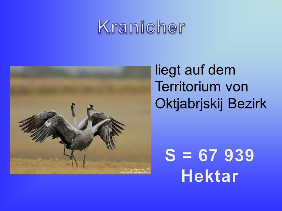 liegt auf dem Territorium von Oktjabrjskij Bezirk