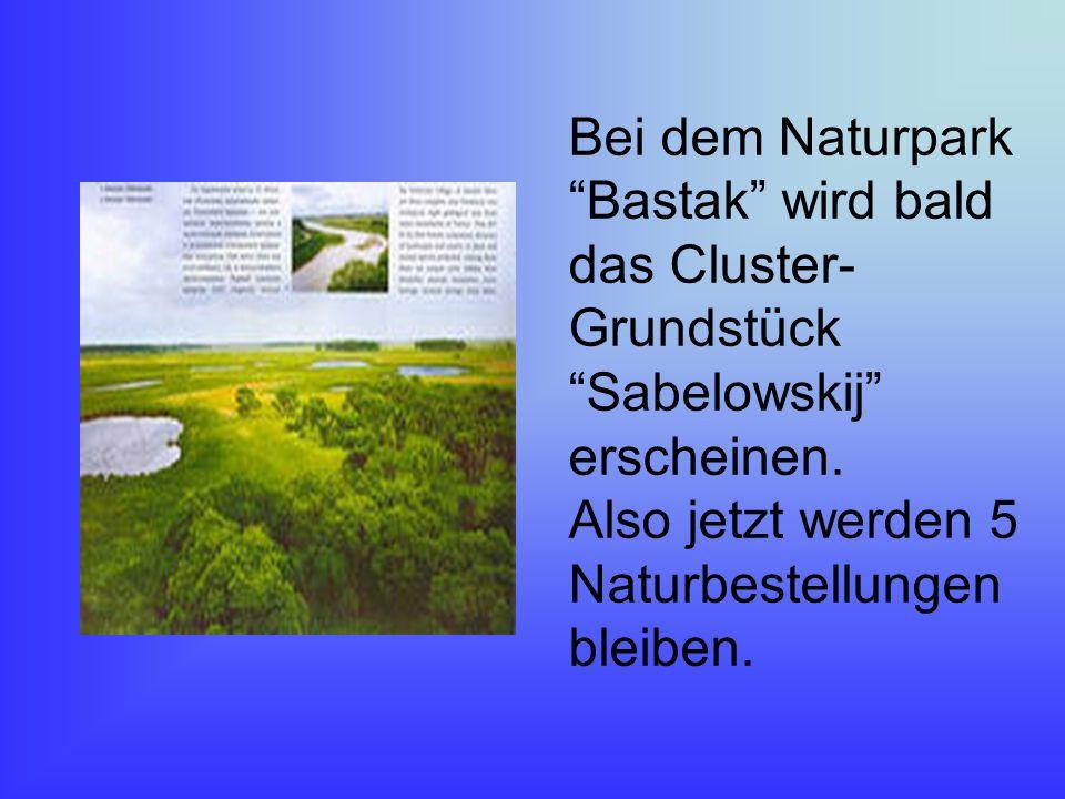 Bei dem Naturpark Bastak wird bald das Cluster- Grundstück Sabelowskij erscheinen.