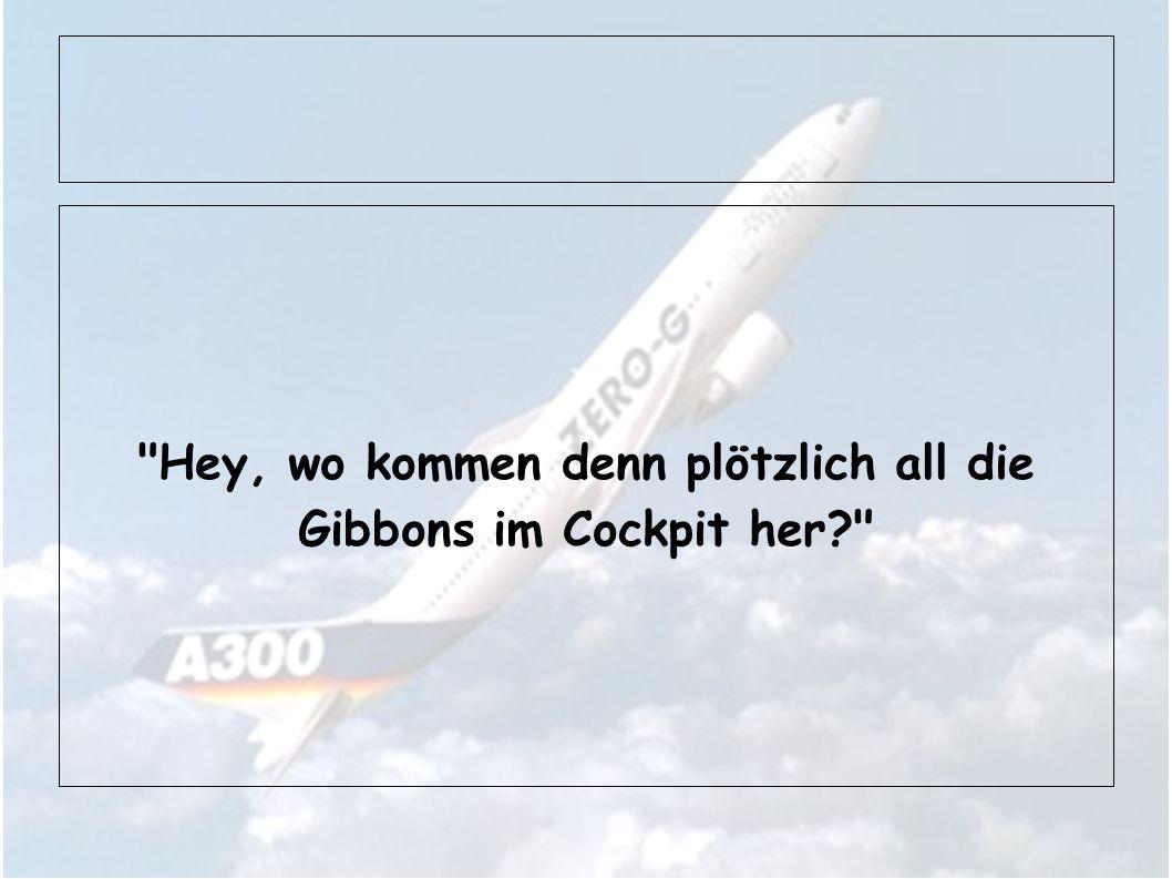 Hey, wo kommen denn plötzlich all die Gibbons im Cockpit her?