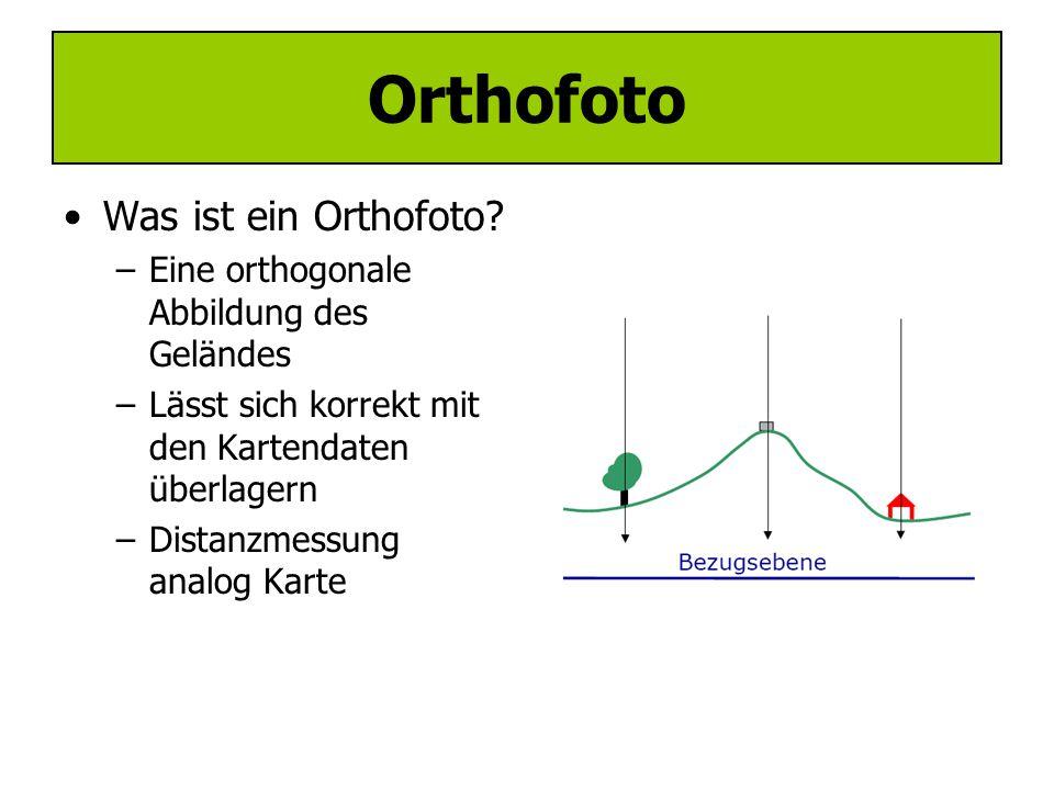 Digitale Photogrammetrie - Orthofoto Generierung -