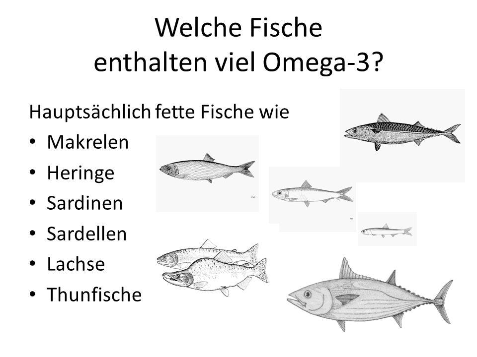 Welche Fische enthalten viel Omega-3? Hauptsächlich fette Fische wie Makrelen Heringe Sardinen Sardellen Lachse Thunfische 54