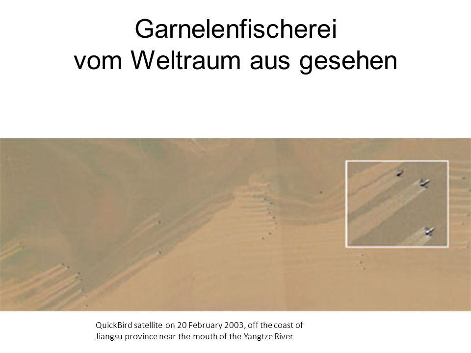 Garnelenfischerei vom Weltraum aus gesehen QuickBird satellite on 20 February 2003, off the coast of Jiangsu province near the mouth of the Yangtze Ri