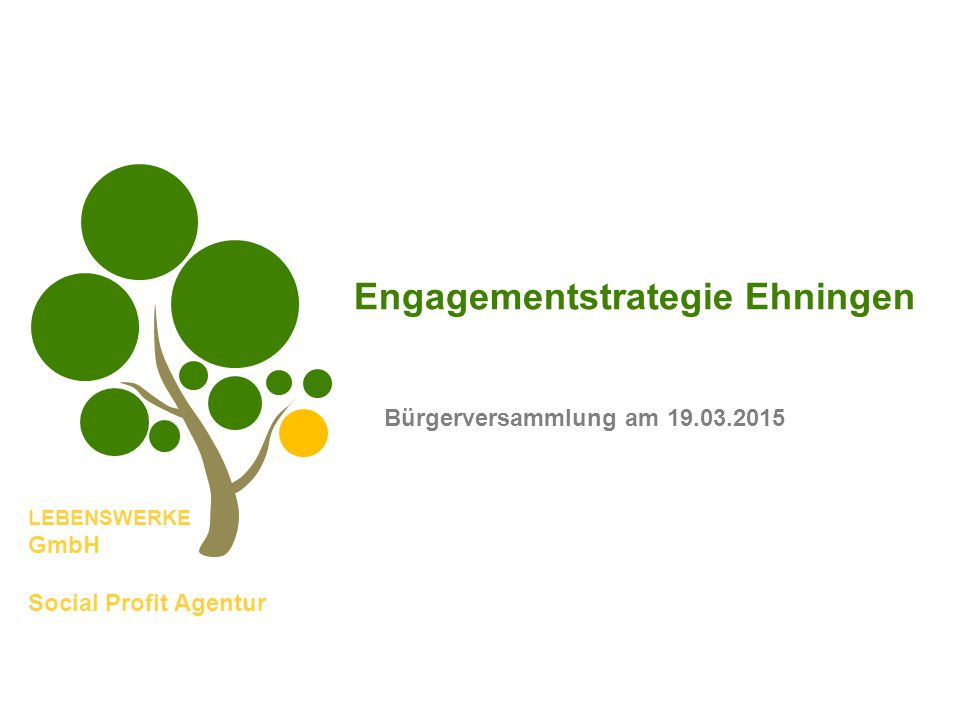 LEBENSWERKE GmbH Social Profit Agentur Engagementstrategie Ehningen Bürgerversammlung am 19.03.2015