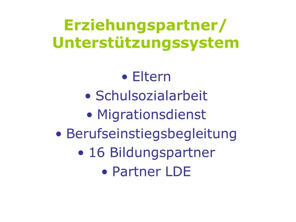 Erziehungspartner/ Unterstützungssystem Eltern Schulsozialarbeit Migrationsdienst Berufseinstiegsbegleitung 16 Bildungspartner Partner LDE