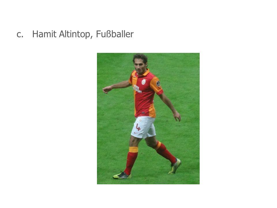 c.Hamit Altintop, Fußballer