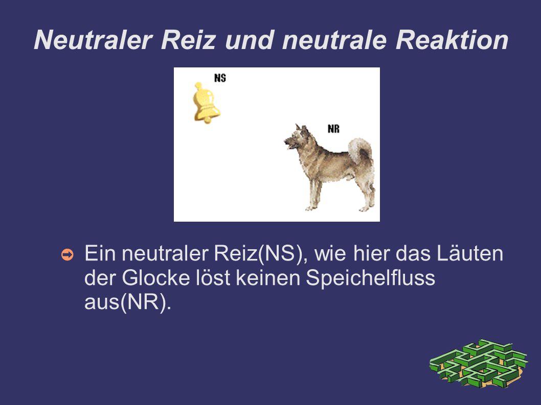 Neutraler Reiz und neutrale Reaktion ➲ Ein neutraler Reiz(NS), wie hier das Läuten der Glocke löst keinen Speichelfluss aus(NR).