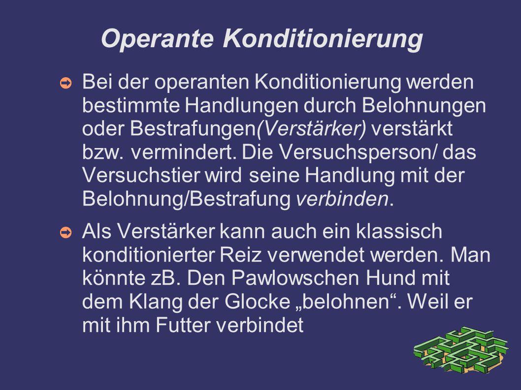 Operante Konditionierung ➲ Bei der operanten Konditionierung werden bestimmte Handlungen durch Belohnungen oder Bestrafungen(Verstärker) verstärkt bzw.