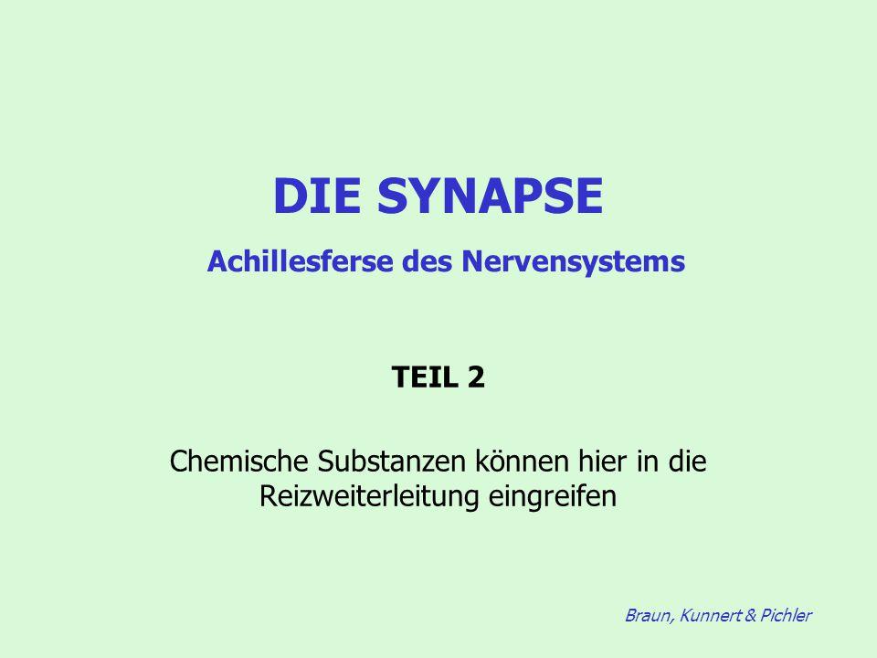 Braun, Kunnert & Pichler DIE SYNAPSE Achillesferse des Nervensystems TEIL 2 Chemische Substanzen können hier in die Reizweiterleitung eingreifen