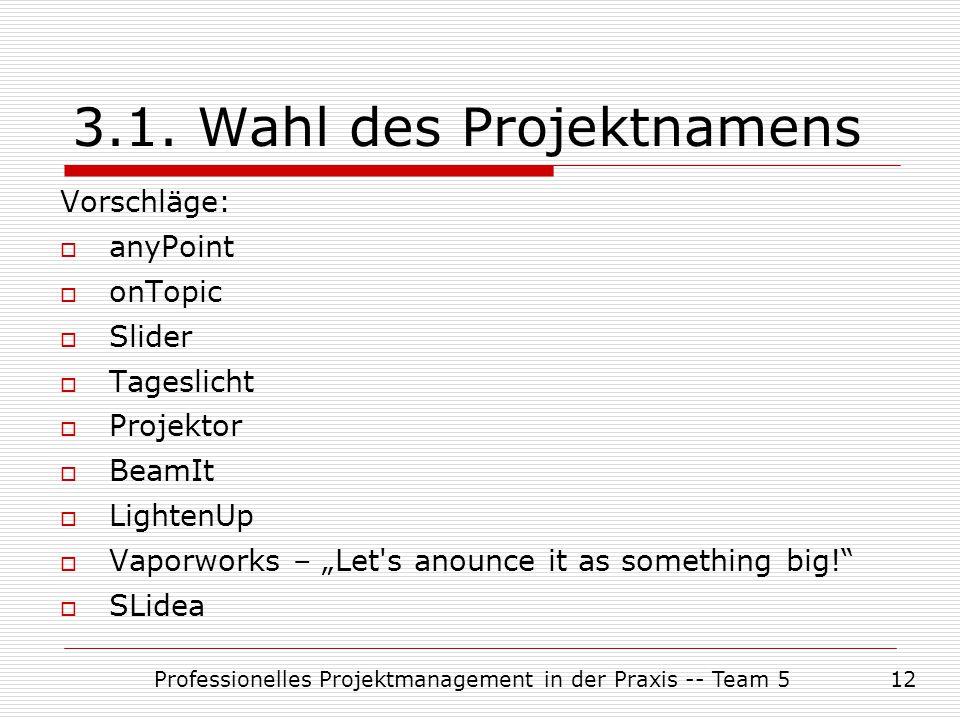 Professionelles Projektmanagement in der Praxis -- Team 512 3.1. Wahl des Projektnamens Vorschläge:  anyPoint  onTopic  Slider  Tageslicht  Proje