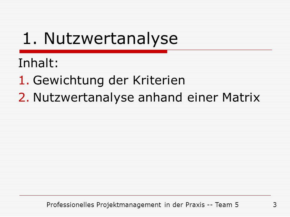Professionelles Projektmanagement in der Praxis -- Team 53 Inhalt: 1.Gewichtung der Kriterien 2.Nutzwertanalyse anhand einer Matrix 1. Nutzwertanalyse
