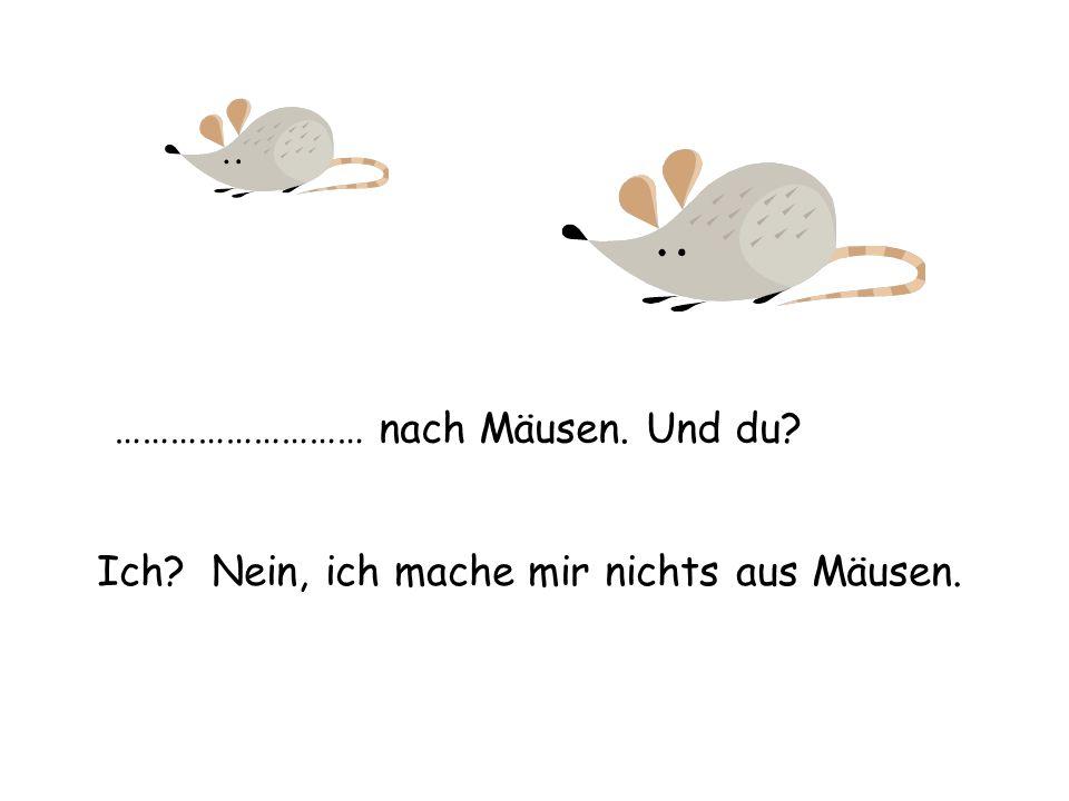 ……………………… nach Mäusen. Und du? Ich? Nein, ich mache mir nichts aus Mäusen.