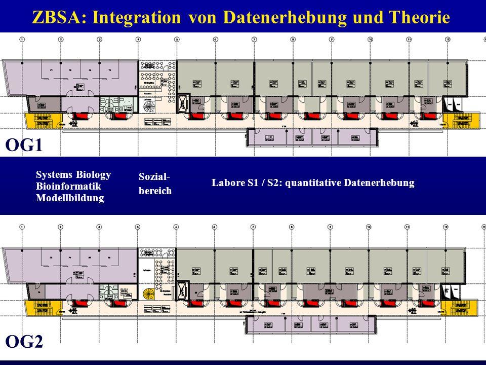 Zentrum für Biosystemanalyse ZBSA Universität Freiburg Systems Biology Bioinformatik Modellbildung Sozial- bereich Labore S1 / S2: quantitative Datenerhebung ZBSA: Integration von Datenerhebung und Theorie OG1 OG2