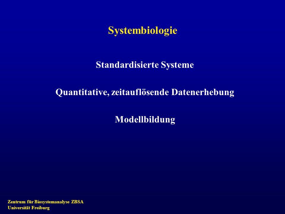 Zentrum für Biosystemanalyse ZBSA Universität Freiburg Systembiologie Standardisierte Systeme Quantitative, zeitauflösende Datenerhebung Modellbildung