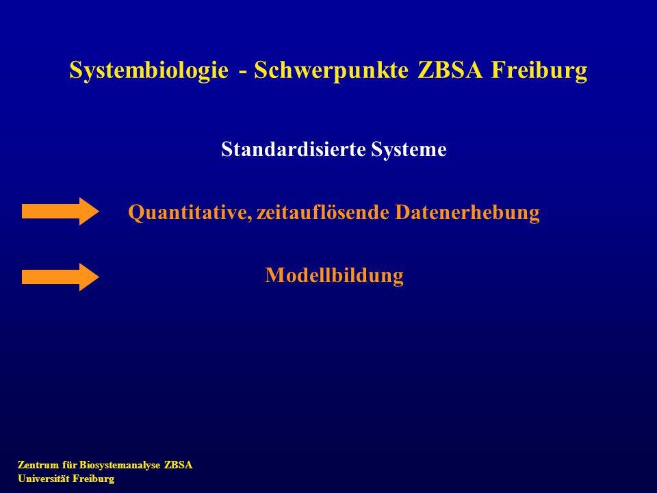 Zentrum für Biosystemanalyse ZBSA Universität Freiburg Systembiologie - Schwerpunkte ZBSA Freiburg Standardisierte Systeme Quantitative, zeitauflösende Datenerhebung Modellbildung