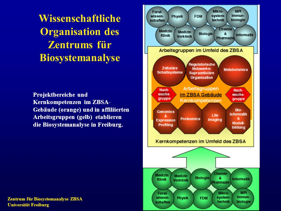 Zentrum für Biosystemanalyse ZBSA Universität Freiburg Projektbereich A: Zelluläre Schaltsysteme Im Mittelpunkt steht die Zelle als unabhängige, funktionelle, biologische Einheit.