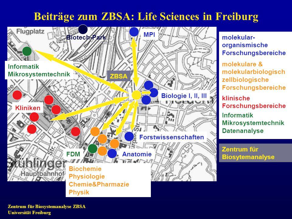 Zentrum für Biosystemanalyse ZBSA Universität Freiburg Beiträge zum ZBSA: Life Sciences in Freiburg MPI Biologie I, II, III Forstwissenschaften Anatom