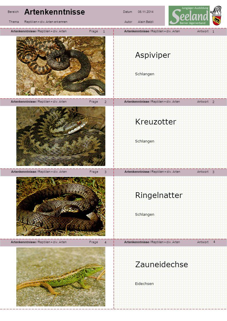 Artenkenntnisse / Reptilien + div. ArtenFrageArtenkenntnisse / Reptilien + div. ArtenAntwort Artenkenntnisse / Reptilien + div. ArtenFrageArtenkenntni