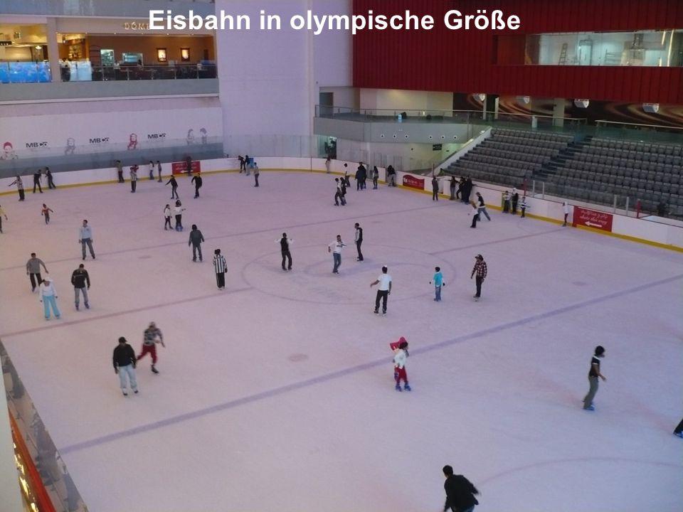 Eisbahn in olympische Größe