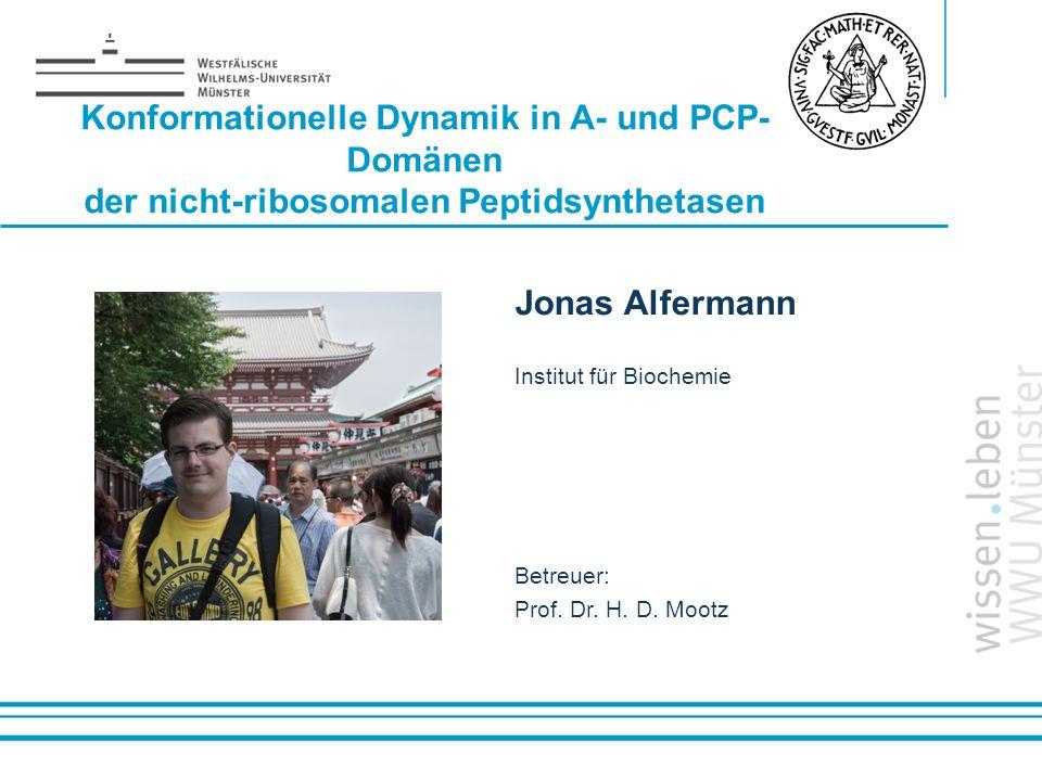 Name: der Referentin / des Referenten Konformationelle Dynamik in A- und PCP- Domänen der nicht-ribosomalen Peptidsynthetasen Jonas Alfermann Institut