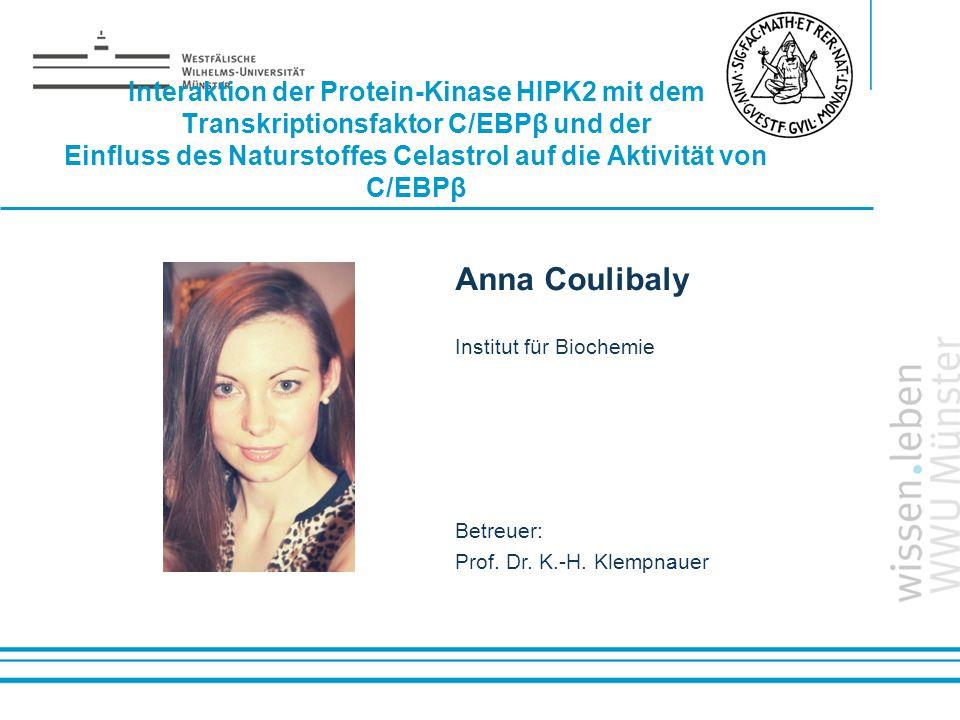 Name: der Referentin / des Referenten Interaktion der Protein-Kinase HIPK2 mit dem Transkriptionsfaktor C/EBPβ und der Einfluss des Naturstoffes Celas