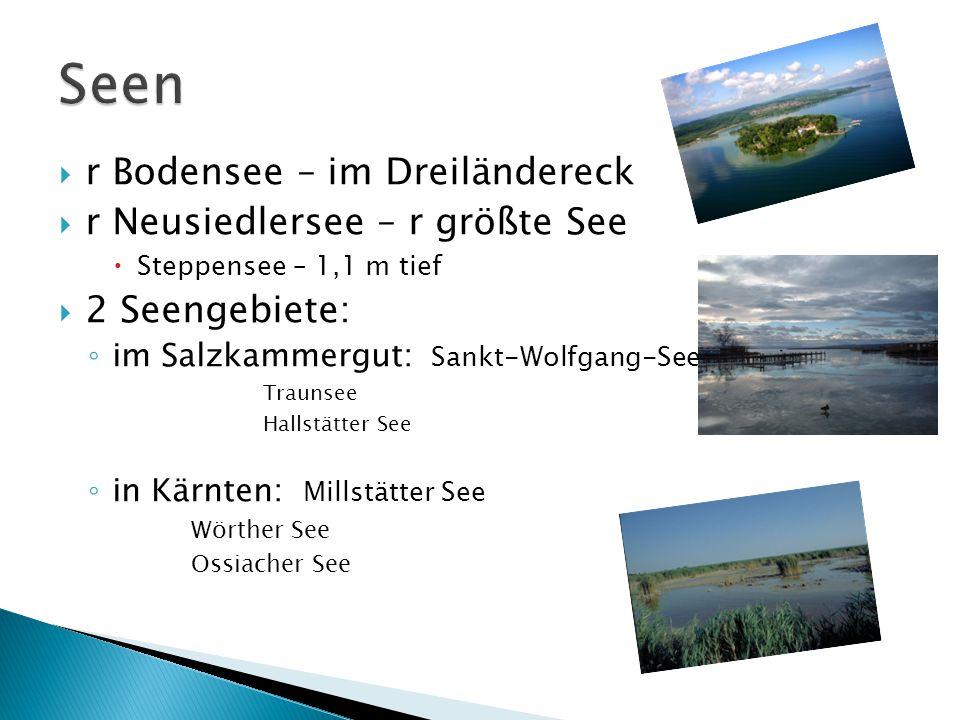  r Bodensee – im Dreiländereck  r Neusiedlersee – r größte See  Steppensee – 1,1 m tief  2 Seengebiete: ◦ im Salzkammergut: Sankt-Wolfgang-See Tra