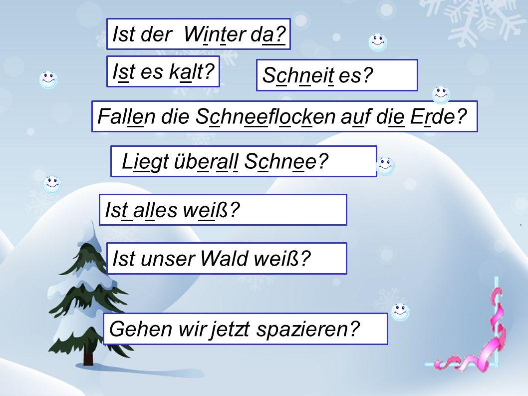 Ist der Winter da? Ist es kalt? Ist alles weiß? Liegt überall Schnee? Schneit es? Fallen die Schneeflocken auf die Erde? Ist unser Wald weiß? Gehen wi