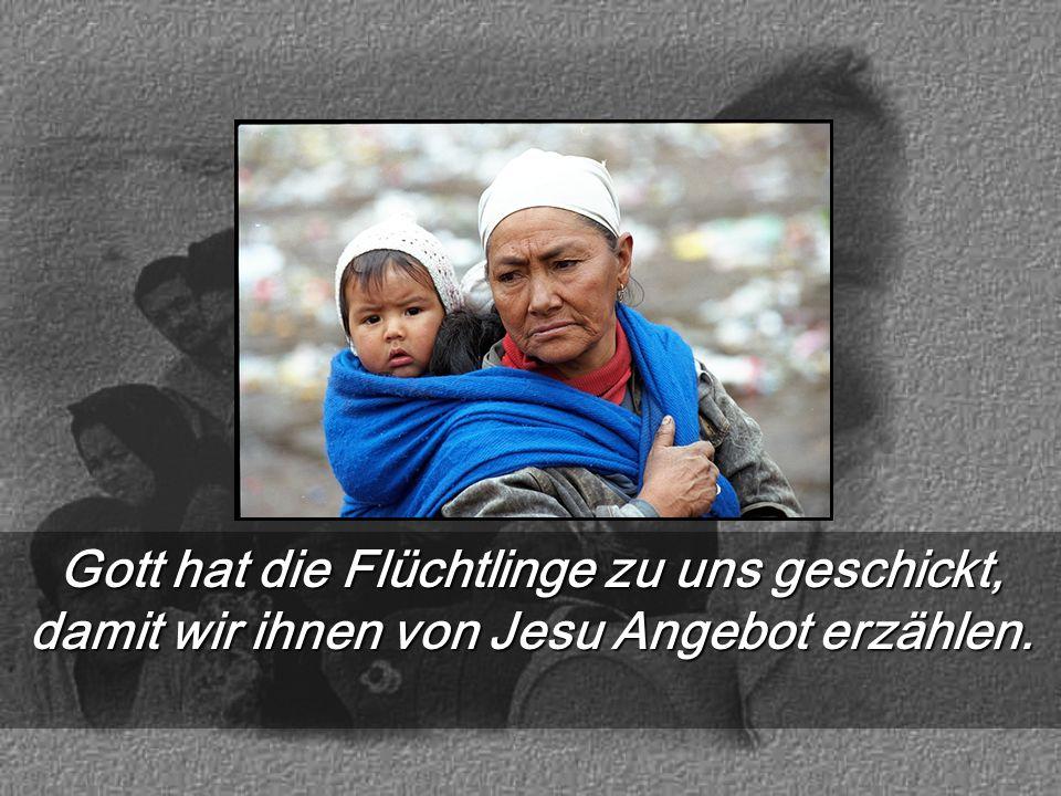 Gott hat die Flüchtlinge zu uns geschickt, damit wir ihnen von Jesu Angebot erzählen.