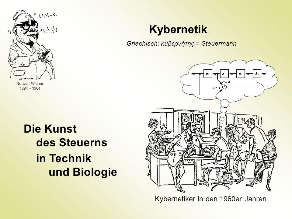 Norbert Wiener 1894 - 1964 Kybernetik Die Kunst des Steuerns in Technik und Biologie Kybernetiker in den 1960er Jahren Griechisch: kυβερνήτης = Steuer