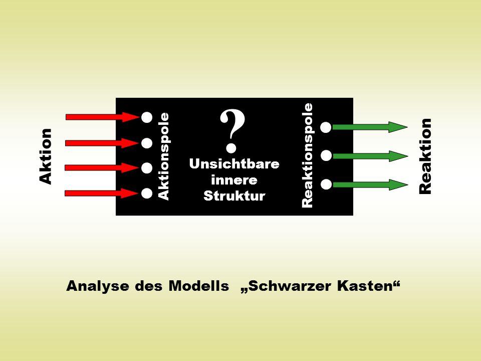 """Analyse des Modells """"Schwarzer Kasten"""" ? Aktionspole Reaktionspole Aktion Reaktion Unsichtbare innere Struktur"""