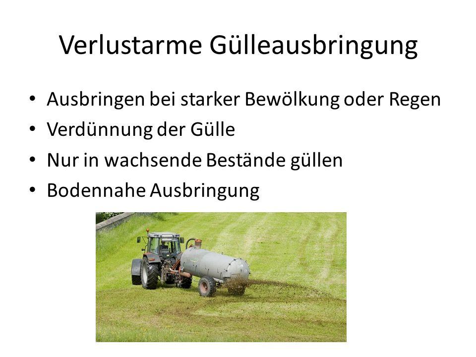 Verlustarme Gülleausbringung Ausbringen bei starker Bewölkung oder Regen Verdünnung der Gülle Nur in wachsende Bestände güllen Bodennahe Ausbringung